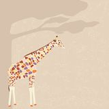 Giraffe vector card Stock Images