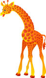 Giraffe. Vector illustration  Stock Photo