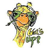 Giraffe vector illustration Royalty Free Stock Image