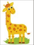 giraffe Vektorgiraffe Stehende Giraffe Afrikanisches Tier Lizenzfreies Stockfoto