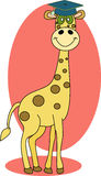 Giraffe wearing graduation cap Royalty Free Stock Photos
