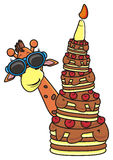 Giraffe wearing sunglasses holding a cake with candles Royalty Free Stock Photography