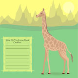 A Giraffe in the Wild. A Giraffe Against Symplistic Nature Background and Poster with Space for Interesting Facts about this Animal. Educational Card for Stock Images