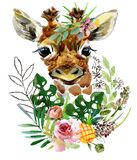 Giraffe. wild animals watercolor illustration