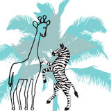 Giraffe and zebra Royalty Free Stock Images