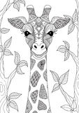 Giraffe. Zendoodle design of giraffe head in the forest for adult coloring book page royalty free illustration