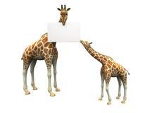 Giraffen met teken Royalty-vrije Illustratie