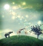 Giraffen und Elefant auf einem Gipfel Stockfotos