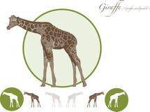 Giraffenillustrationslogo Stockbilder