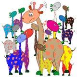 Giraffes σε μια ομάδα Στοκ εικόνα με δικαίωμα ελεύθερης χρήσης