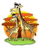 Giraffes. Color illustration of two giraffes Stock Images