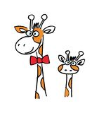 Giraffes. Two isolated different giraffes. vector image Royalty Free Stock Images