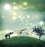Giraffes and elephant on a hilltop. Giraffes and an elephant on a hilltop under the moon stock photos