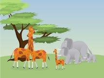 Giraffes and elephants stock illustration