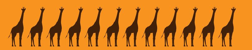 Giraffes graphic drawing band. Giraffes live in Africa, inhabited by arid parts. Today, giraffes live in the South and South-East of the Sahara. Giraffes live in Royalty Free Stock Images