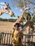 Giraffes in Kruger park South Africa Stock Images