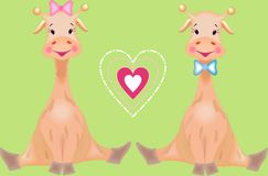 The giraffes in love Stock Photography