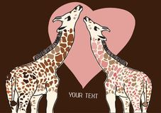 Giraffes in love Royalty Free Stock Image