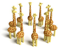 Giraffes meeting Stock Images