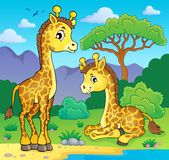 Giraffes in nature theme image 1 Stock Images