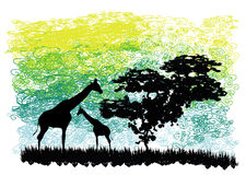 Giraffes and a tree Royalty Free Stock Photo