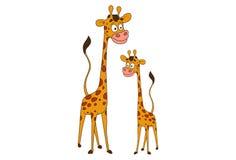 Giraffes. Two Giraffes. Vector illustration. Isolated on white background Stock Images
