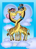 Giraffes wedding. Color illustration of two giraffes. Like bride and groom Royalty Free Stock Images