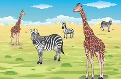 Giraffes and Zebras stock illustration