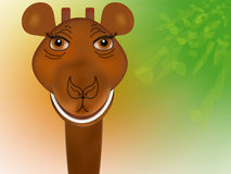 giraffhuvud vektor illustrationer