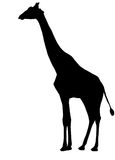 giraffsilhouette royaltyfri illustrationer