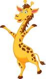 Girafftecknad filmanseende Royaltyfri Fotografi