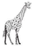 Giraffzentangle stiliserade, vektorn, illustrationen, frihandspenci Royaltyfri Bild