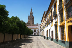 Giralda看法从广场Patio de班德拉斯,塞维利亚,西班牙的 库存图片