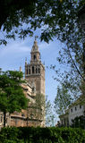 The Giralda Royalty Free Stock Image