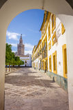 The Giralda from the Alcazar royalty free stock photo