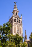 Giralda cathedral Stock Photography