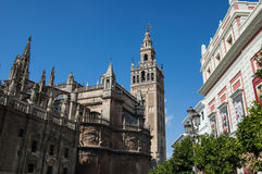 Giralda and Cathedral of Seville Royalty Free Stock Photos