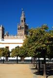 Giralda Kontrollturm, Sevilla, Spanien. Stockbild