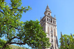 Giralda Stock Photography
