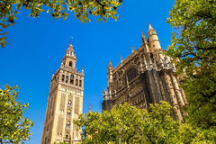 Giralda and roof of the Sevilla Cathedral. Photograph of tower Giralda and roof of the Sevilla Cathedral photo taken from Jardín de Mandarinas, Sevilla Stock Photography