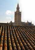 The Giralda seen from a roof Stock Image
