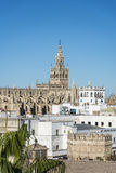 The Giralda in Seville, Andalusia, Spain. Stock Images