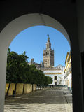 Giralda, Seville. A view of the Giralda of Seville Cathedral taken from a courtyard Stock Image