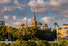 Giralda Spire Bell Tower of Seville Cathedral. Stock Image