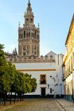 Giralda tower. Colorful picture of Giralda tower -Seville Spain Stock Image