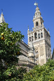 Giralda tower, the belfry of the Cathedral of Sevilla Royalty Free Stock Photography