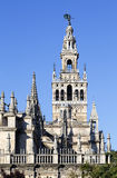 Giralda tower, the belfry of the Cathedral of Sevilla Royalty Free Stock Images