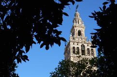 Giralda Royalty Free Stock Photos