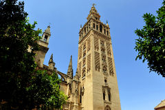 The Giralda Tower, Cathedral of Seville, Andalusia, Spain Stock Images