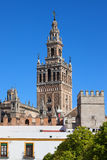Giralda Tower in Seville Stock Photography